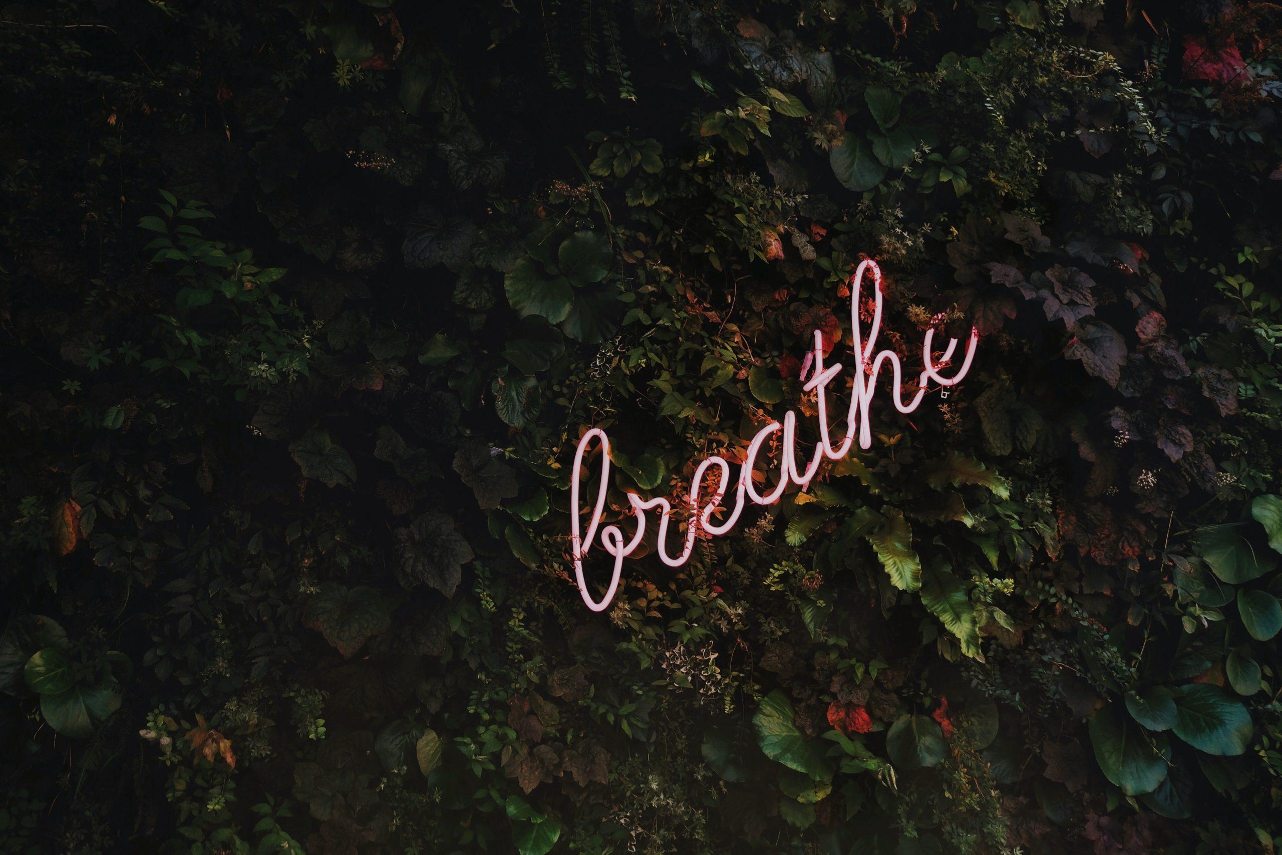 joga oddech medytacja
