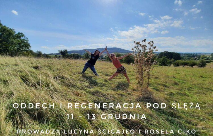 Rosela Ciko joga